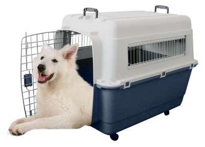 Hunde-Transportboxen und Taschen