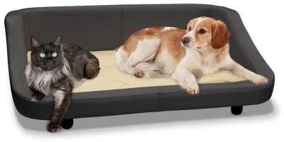 Sofa und Hundekörbe